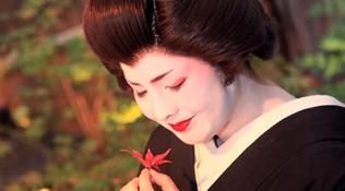 Geisha IV