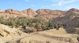 Wüste – Oase
